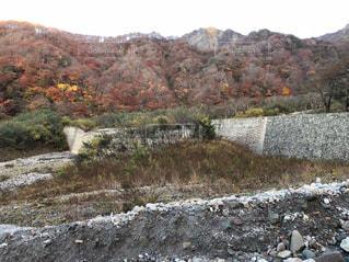 風景,秋,紅葉,大山,山登り,鳥取県