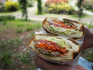 サンドイッチを持っている手の写真・画像素材[1640713]