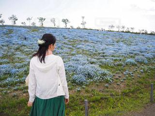 ネモフィラ畑にいる女性の写真・画像素材[2095043]