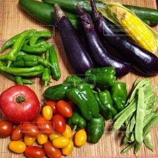 食べ物,トマト,野菜,ミニトマト,食品,ピーマン,健康,キュウリ,食材,パプリカ,夏野菜,採れたて,フレッシュ,生野菜,無農薬,ベジタブル,栄養,ナス,とうもろこし,いんげん,アイコ,ししとう,有機野菜,フレッシュ野菜