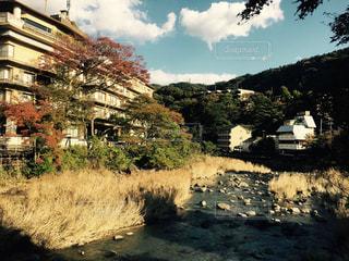 秋の箱根の写真・画像素材[1598081]