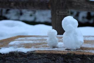 木,雪,屋外,白,ベンチ,雪景色,雪だるま,ホワイト,養老