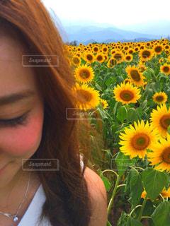 女性,自然,花,夏,ひまわり,黄色,向日葵,黄色の花,ひまわり畑,デート,summer,山梨,sunflower,yellow,フォトジェニック,date,明野ひまわり畑