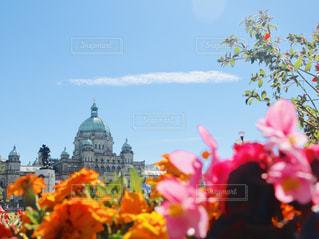 カナダ旅行の写真・画像素材[2267857]
