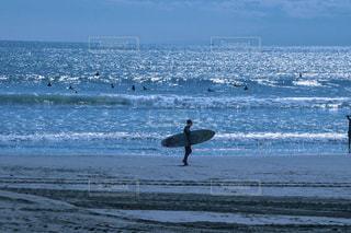 海,屋外,サーフィン,ビーチ,砂浜,水面,海岸,日中,surf,surfing