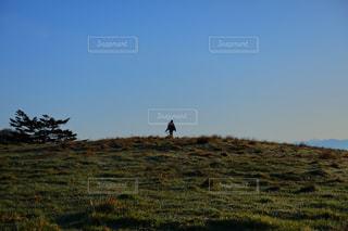 自然,スポーツ,屋外,緑,景色,ハイキング,景観,草木