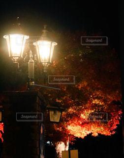 紅葉,観光地,山梨県,外灯,街路樹,河口湖,真っ赤