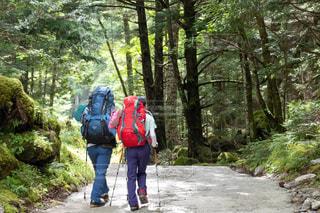 自然,山,景色,トレッキング,登山,夫婦,スポーツの秋
