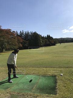 秋,紅葉,森林,屋外,ゴルフ,草木