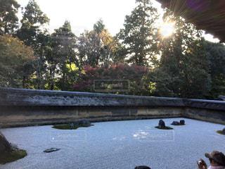 秋,紅葉,京都,もみじ,龍安寺,枯山水,石庭