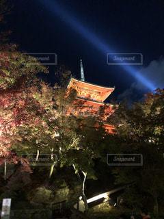 夜のライトアップされた街の写真・画像素材[1634730]