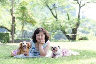犬を持つ女性の写真・画像素材[1640475]