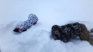 雪,白,子供,女の子,雪遊び,男の子,スキー場,ホワイト,兄妹,9歳,島根県,6歳,ホワイトカラー,ウエアー,三井野原スキー場