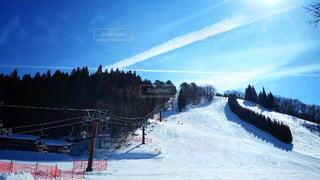 晴天の雪景色の写真・画像素材[1732368]