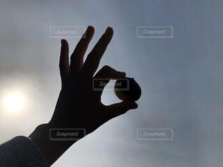 空,秋,屋外,太陽,栗,手,暗い,手持ち,人物,外,ポートレート,ライフスタイル,左手,くり,手元