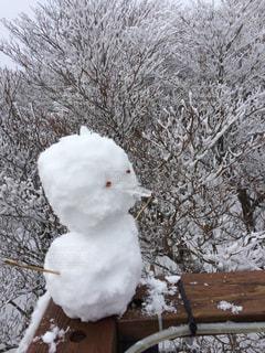 雪,クリスマス,雪だるま,Snow White,ほわほわももふ