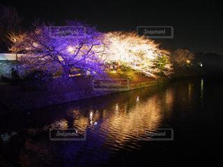 春,桜,赤,青空,花見,夜桜,山,景色,サクラ,さくら