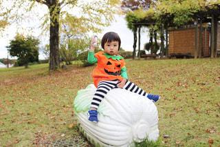 白菜のおもちゃに乗っている男の子の写真・画像素材[1582217]