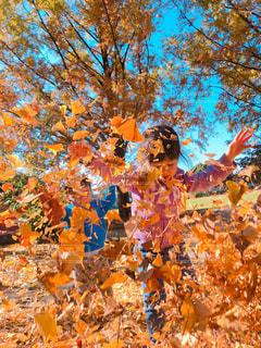 落ち葉を投げる子供たちの写真・画像素材[1637683]