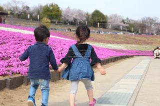 手を繋いで歩く子供たちの写真・画像素材[2644382]