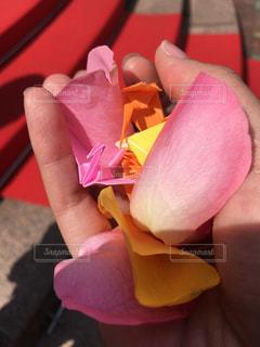 近くに花を持っている手のアップの写真・画像素材[1552578]