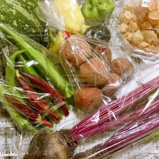 とれたてカラフル野菜の写真・画像素材[4662565]