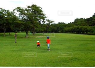自然,植物,草原,親子,絆,未来,命
