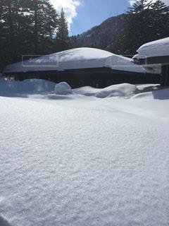 自然,雪,屋外,ホワイト,新雪,奥飛騨,静けさ