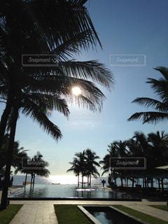 自然,風景,屋外,ビーチ,光,旅行,旅,プーケット,海外旅行,日中,アジアンリゾート