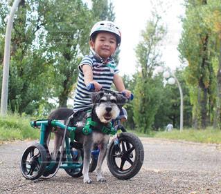 自転車 - No.426283