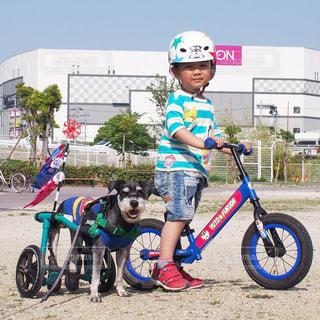 No.457867 犬と子供