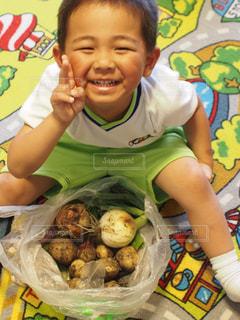 野菜 - No.519356