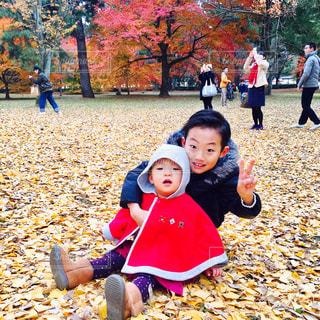 空,公園,秋,紅葉,屋外,歩く,樹木,人物,道,人,座る,銀杏,地面,幼児,男の子,遊び場,落葉,お出かけ,いちょう
