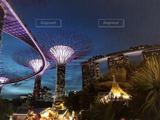 ビル,海外,夕暮れ,観光,ライトアップ,旅行,シンガポール,マリーナベイサンズ,ガーデンズバイザベイ,スーパーツリー