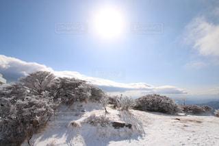 光と樹氷の写真・画像素材[1770717]