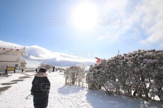太陽と雪の共演の写真・画像素材[1770723]