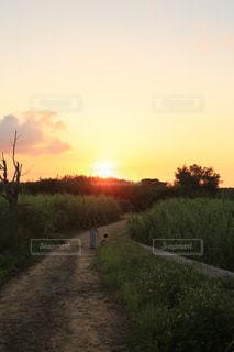 空,夕日,太陽,沖縄,光