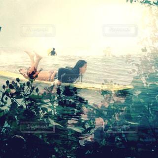 サーフィンの写真・画像素材[1550239]