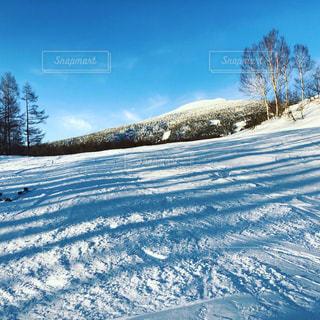 雪に覆われた斜面の写真・画像素材[1804250]