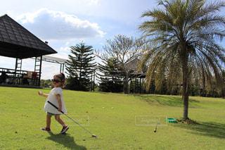 空,スポーツ,サングラス,女の子,旅行,ヤシの木,タイ,ゴルフ,4歳,2年目