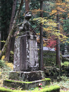 犬,秋,紅葉,銅像,長野県,光前寺,しっぺい太郎,早太郎