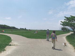 犬,空,後ろ姿,散歩,人物,背中,人,後姿,夫婦