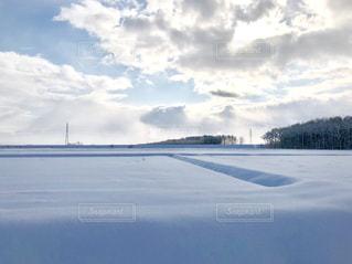自然,風景,空,冬,雪,屋外,雲,北海道,雪原,樹木,北国