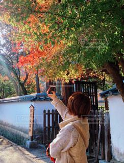 紅葉を撮る人の写真・画像素材[1643577]