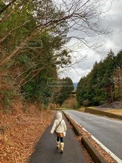 お散歩の写真・画像素材[1782417]