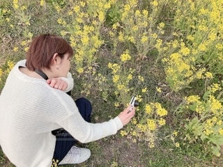 春の写真・画像素材[1868436]
