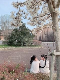 お花見の写真・画像素材[1873510]