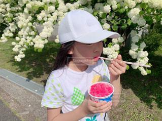公園,花,屋外,白,帽子,ストロー,人物,人,Tシャツ,食べる,かき氷,10歳,カキ氷,夏日,夏服,半袖