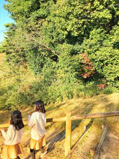 公園の写真・画像素材[2147346]