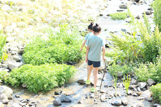 庭に立っている人の写真・画像素材[3143275]